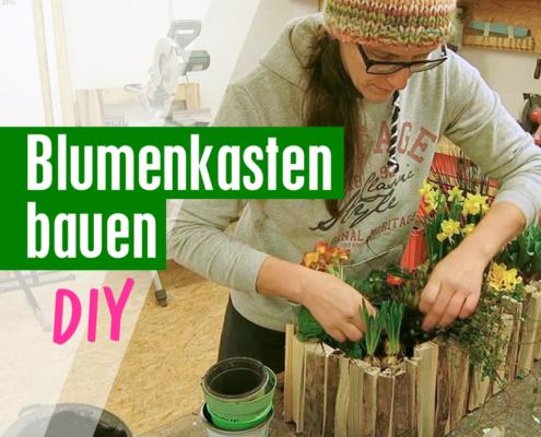 Blumenkasten Holz selber bauen DIY